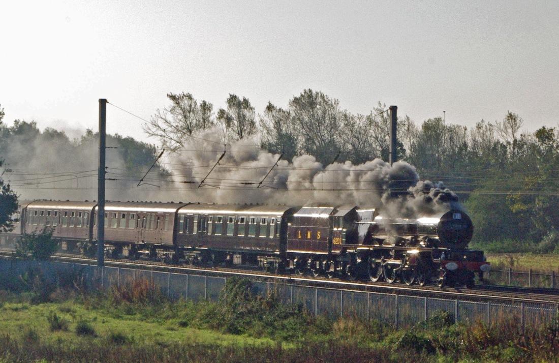 46201 Winwick 2011