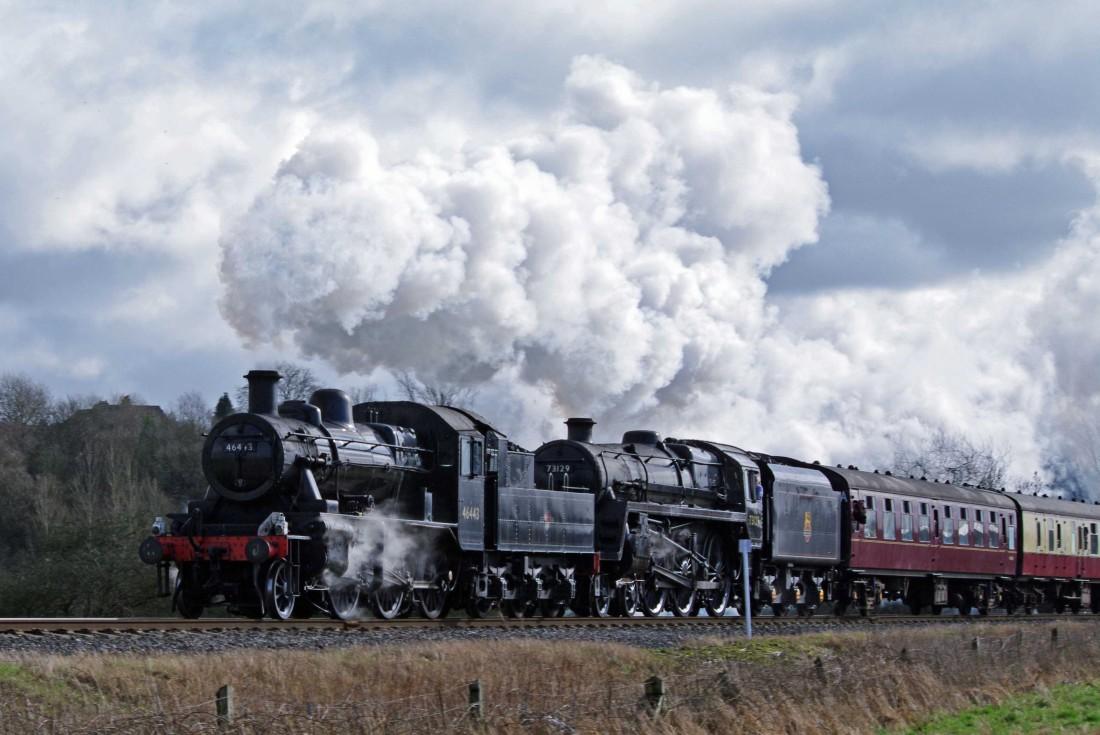 46443 at Burrs 2011.jpg