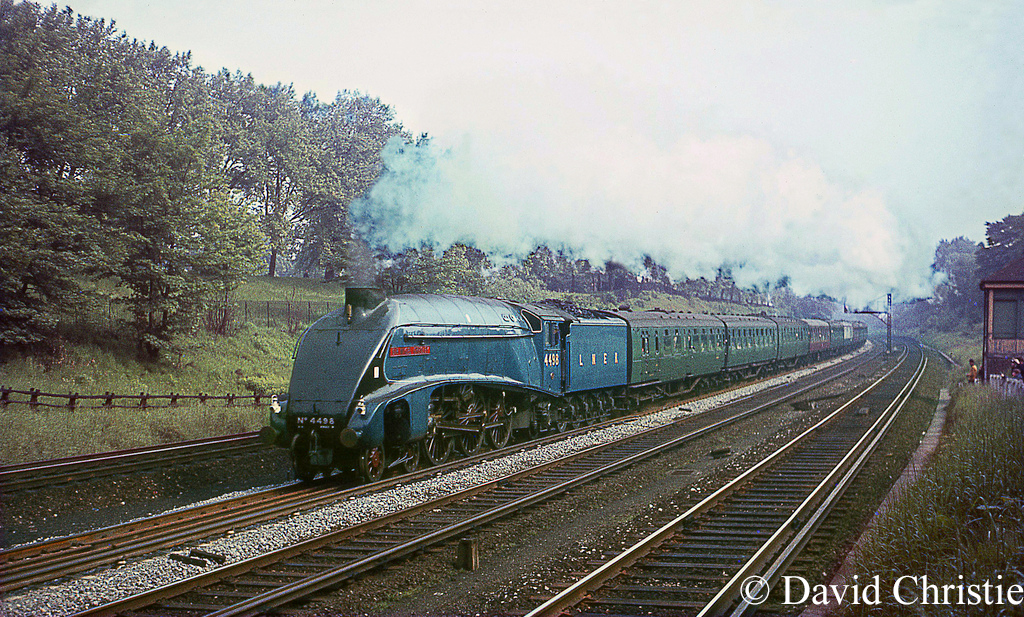 60007 Sir Nigel Gresley in Clapham Cutting - June 1967.jpg