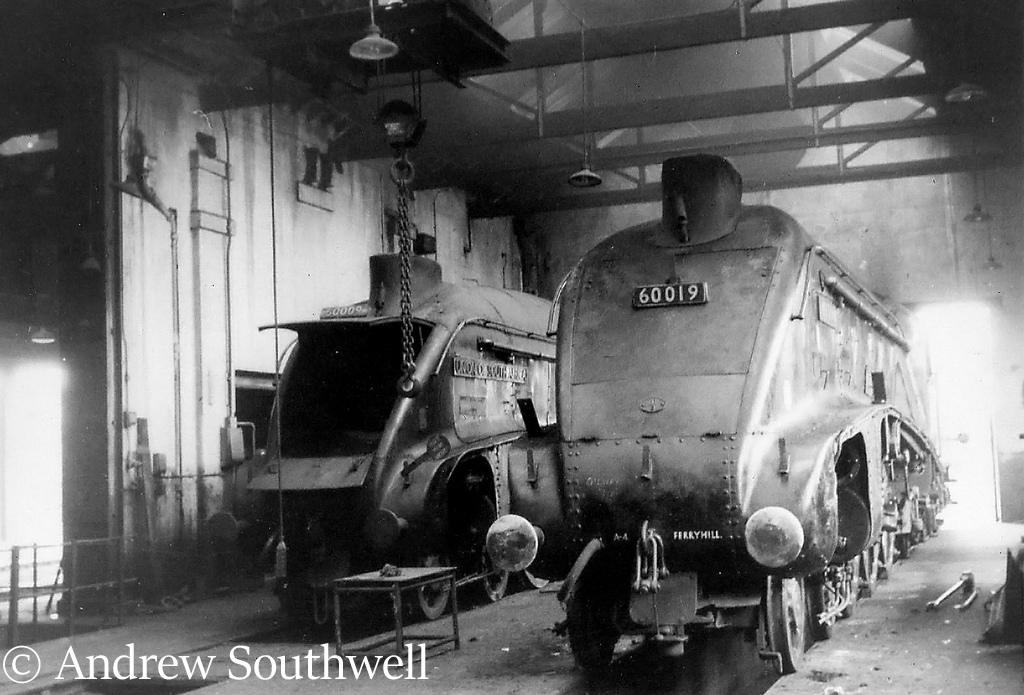 60009 Union of South Africa and 60019 Bittern inside the shed at Ferryhill shed at Aberdeen - August 1966