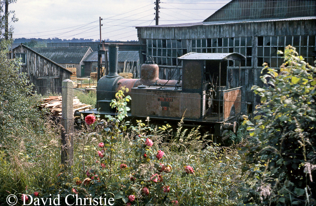Baxter at Sheffield Park on the Bluebell Railway - June 1964.jpg