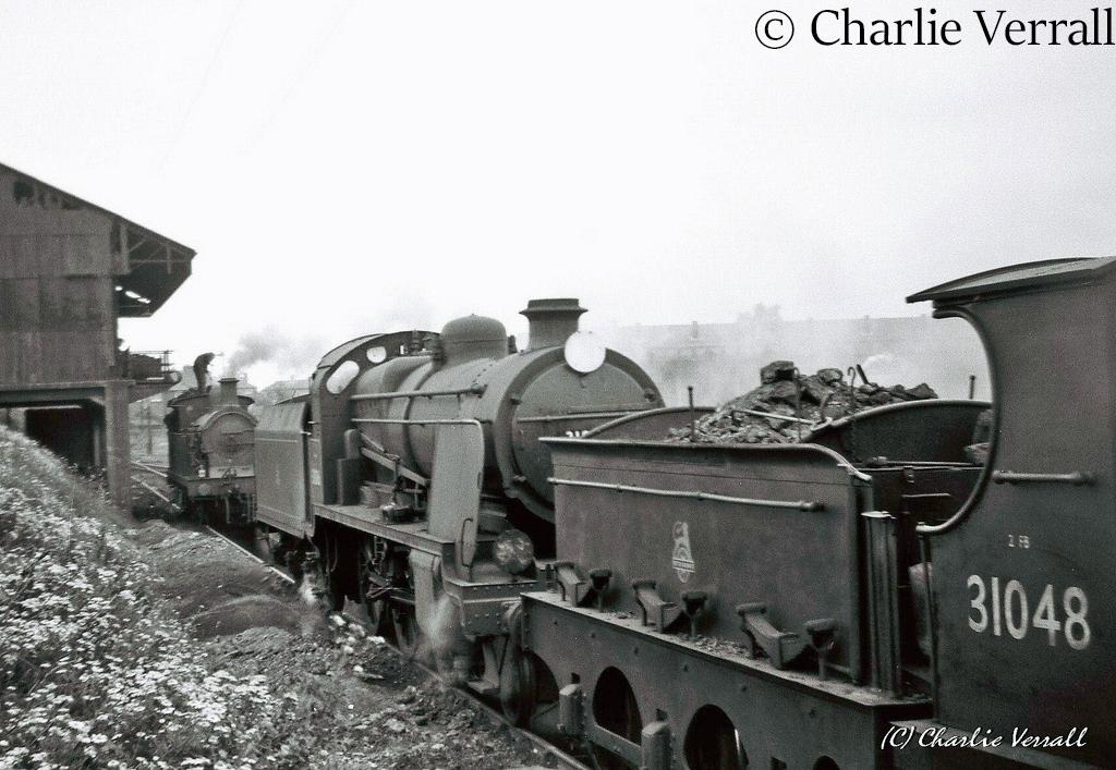 31806 on Ashford shed - July 1955.jpg