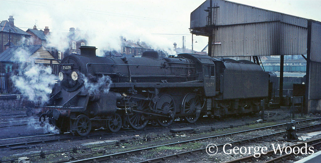 75079 on Guildford shed - April 1966.jpg