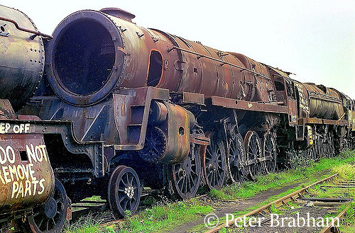 This image has an empty alt attribute; its file name is 92219-in-woodhams-scrapyard-at-barry-in-front-of-35022-holland-america-line-c2009.jpg